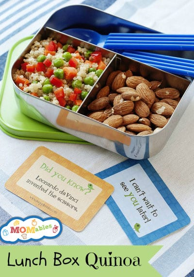 MOMables-lunch-box-quinoa