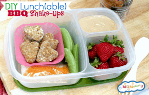 Healthy Lunchable BBQ Shake Ups Remake MOMables.com