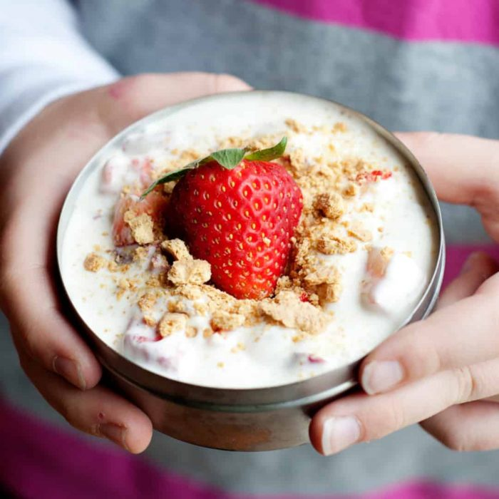 strawberry fruit parfait in a tin lunch container