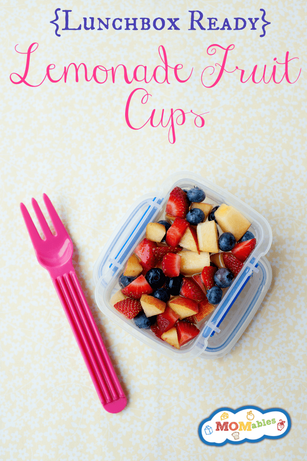 Easiest way to make homemade fruit cups ahead of time with real ingredients. They are perfect for the lunchbox!