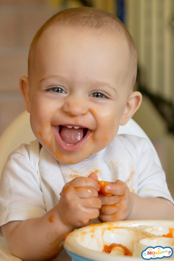 Apricot Baby food