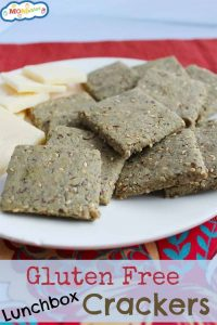 gluten free lunchbox crackers