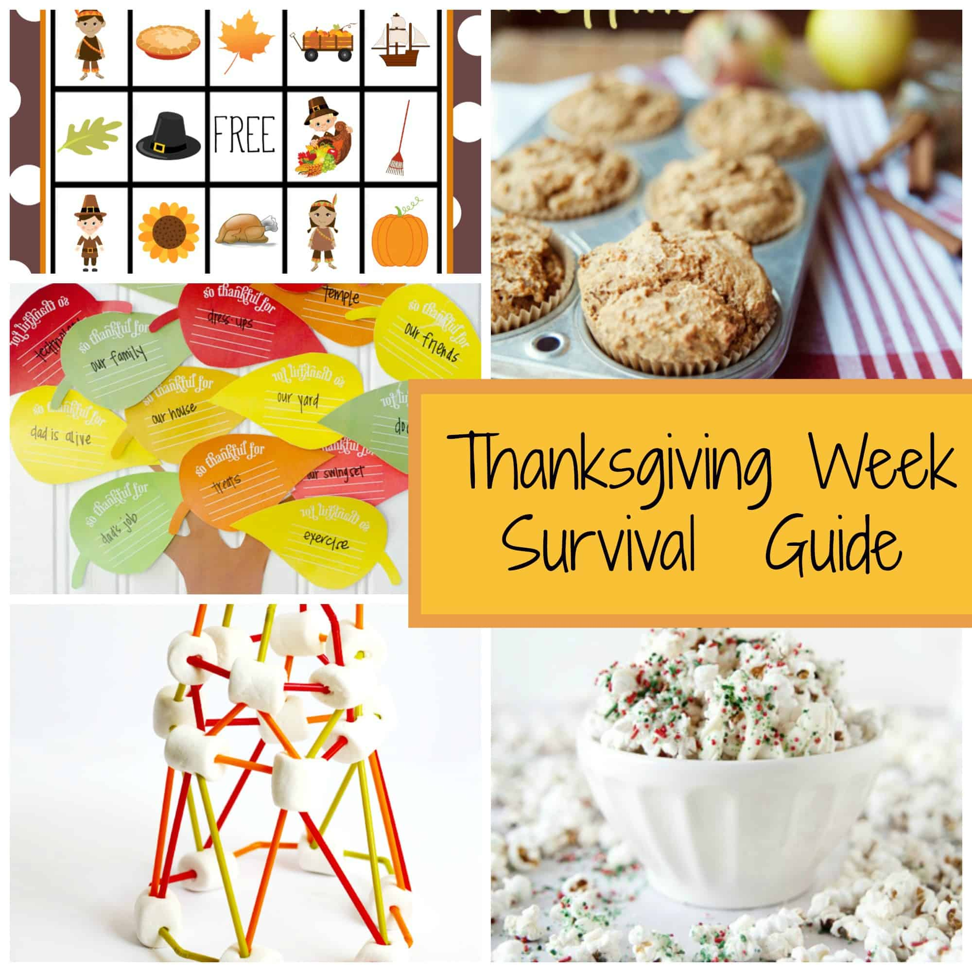 Thanksgiving Activity and Craft Ideas