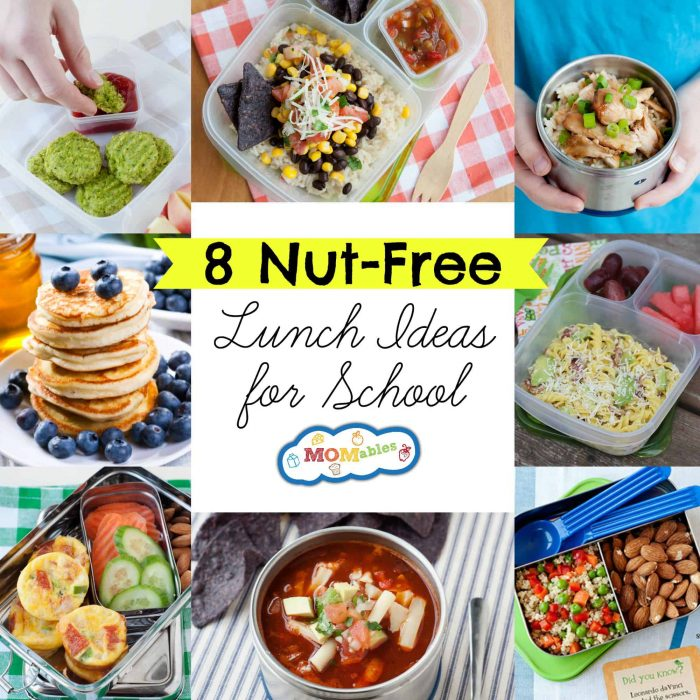 8 Nut Free Lunch Ideas For School Momables