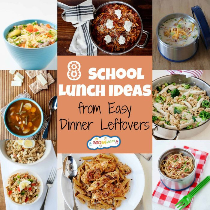8 School Lunch Ideas from Easy Dinner Leftovers - MOMables