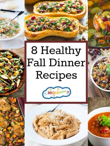 Enjoy these comforting, delicious healthy fall dinner recipes in the cooler weather! These are perfect to feed a crowd or a weeknight dinner for the family.