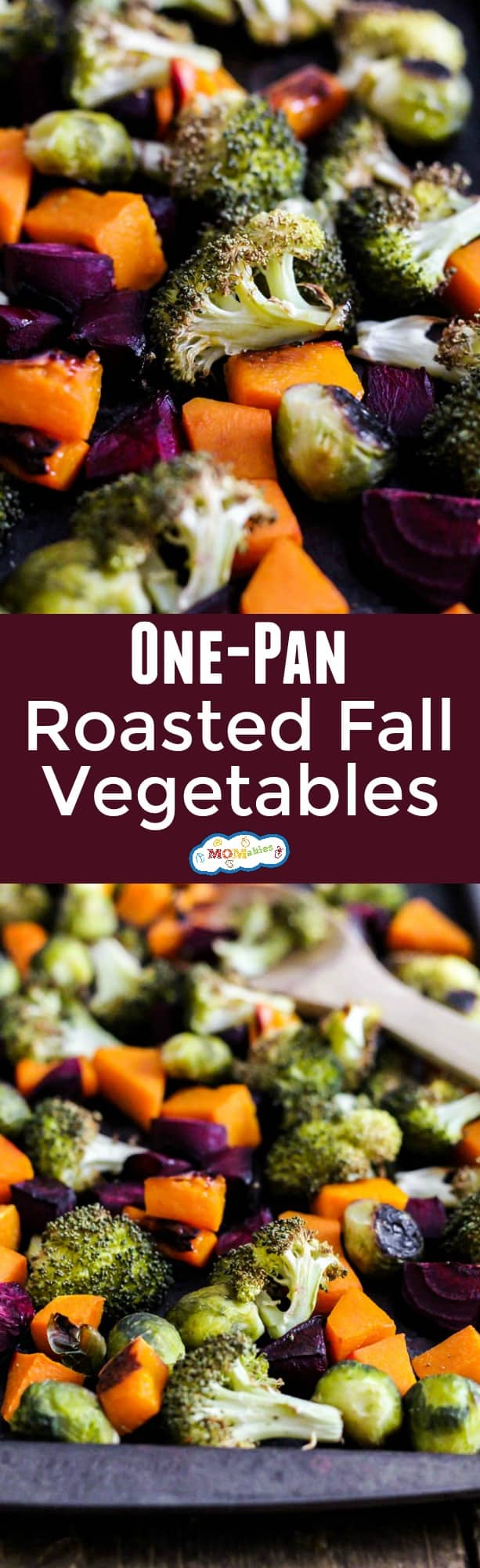 Want your family to eat more vegetables? They won't be able to resist these One-Pan Roasted Fall Vegetables! Minimal clean-up and lots of flavor.