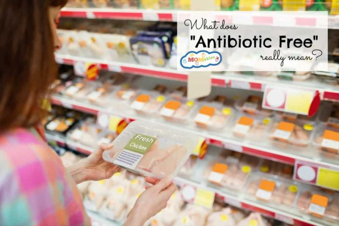 "Shopping for meat? Do you know what ""Antibiotic Free"" really means? Check out this post to know what you are really buying."