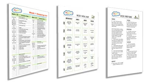 budgetize printables