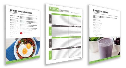 budgetize bonus recipes and expense sheets