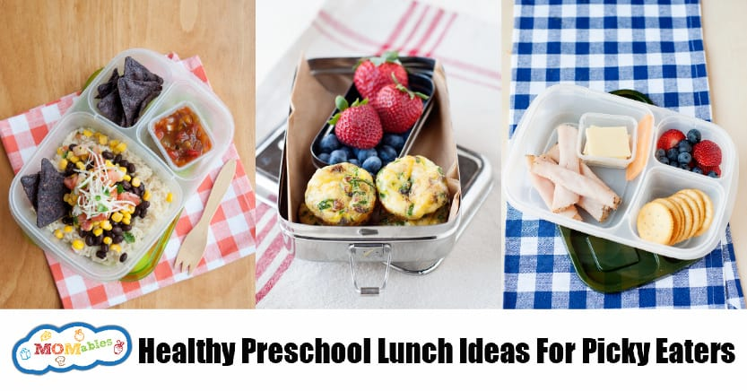 Lunch Ideas for Picky Eaters back to school