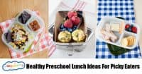 Healthy Preschool Lunch Ideas For Picky Eaters