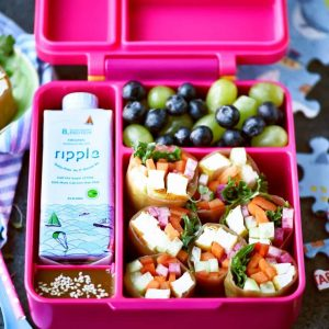 OmieBox packed with a fun and nutritious lunch that keeps your food separated