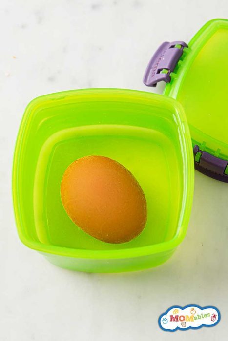 hard boiled egg in a container to shake and peel